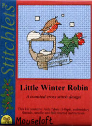 Little Winter Robin
